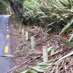 Walkway on Beach Valley Road