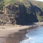 Accretion Piha Beach
