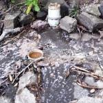 SewageOverspill