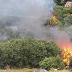 Fire North Piha