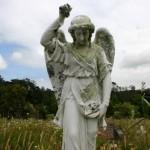 Waikumete Cemetery
