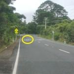 Piha speeding