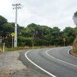 Piha Roads