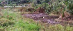 Wetland area dug up